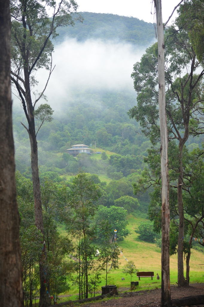D60_2800_Namgyalgar-misty-morning_xl