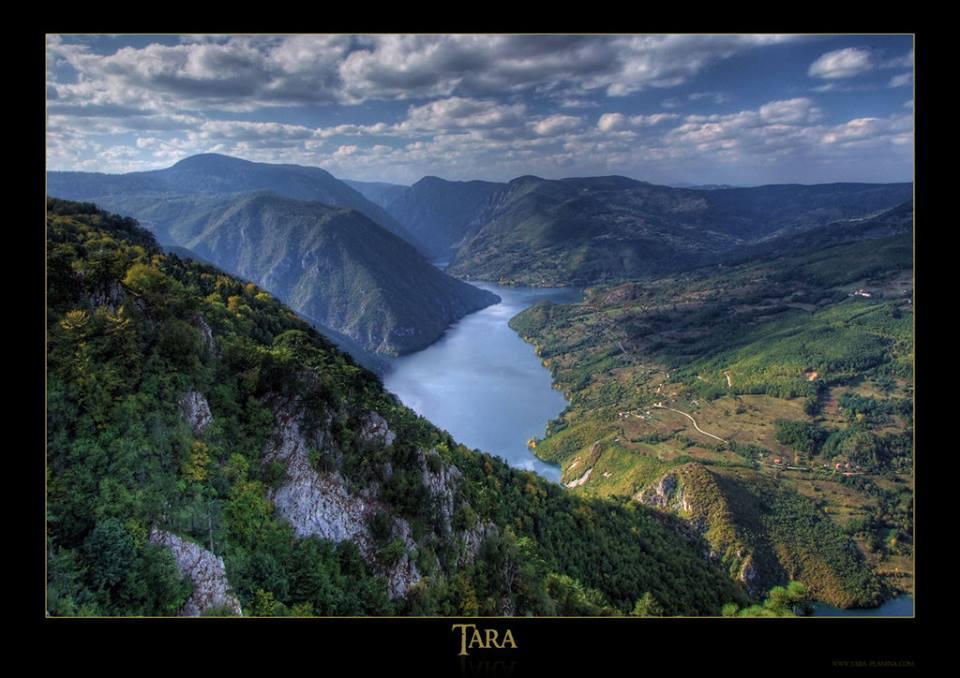 Tara-mountain-National-park-in-Serbia