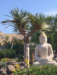 Buddha-dzamling-gar-229x300