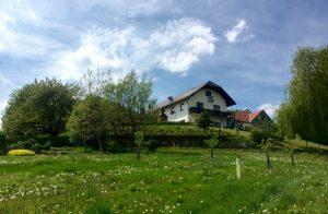 Фотовыставка «40 лет Дзогчен-общине Австрии»
