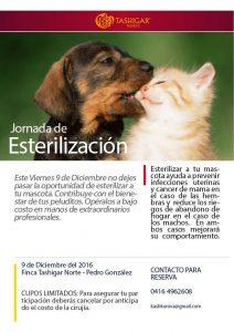 Проект спасения животных в Северном Ташигаре, Венесуэла