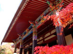 Ретрит Чогьяла Намкая Норбу в Киото 2-6 сентября 2017 года