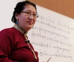 Онлайн-обучение тибетской медицине с 12 февраля 2019 года