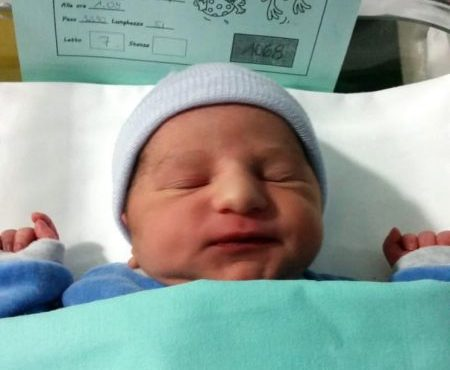 Родился – Николо Троя