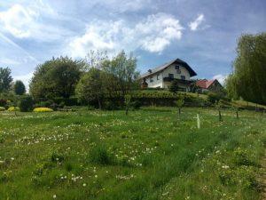 Запланированные мероприятия Дзогчен-общиной Йеселлинга, Австрия