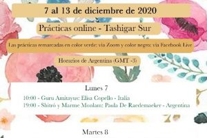 Онлайн-практики из Южного Ташигара с 7-го по 13-ое декабря