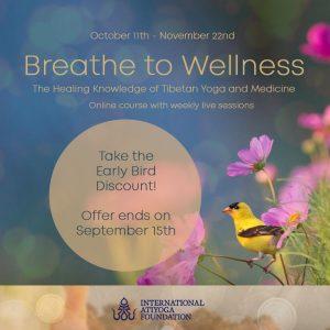 Дыхание для хорошего самочувствия! Онлайн-курс с доктором Пунцог Вагмо и Фабио Андрико