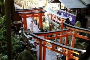 Визит Чогьяла Намкая Норбу в Японию и Тайвань