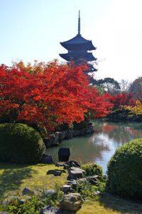 Новый ганчи в Мунселинге, Япония и Ретрит в Киото