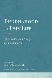 Обзор «Зеркала» – Состояние будды в этой жизни