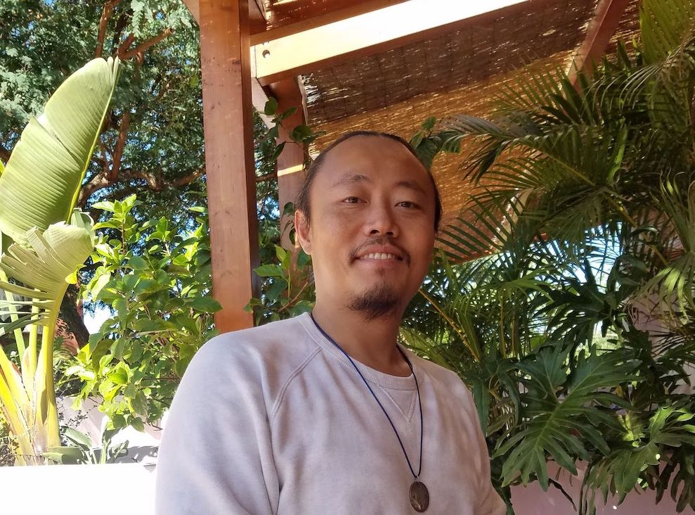 Как я встретил Чогьяла Намкая Норбу – история Винсе Ли